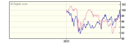 6 Month Invesco Global Emerging Markets GBP Dis NAV
